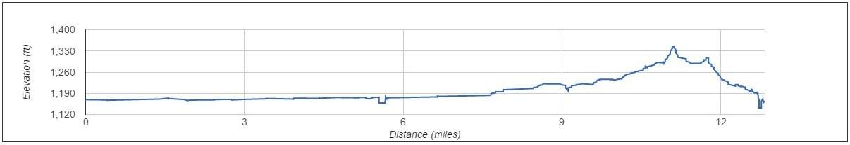 Rock N Roll Arizona Half Marathon Elevation Map